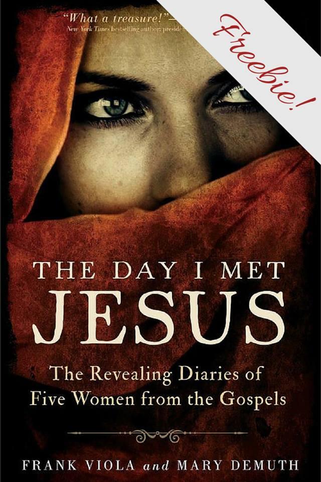 The Day I Met Jesus Freebie Chapter